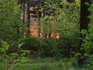 Brand beslaat gebied van ongeveer 60 hectare