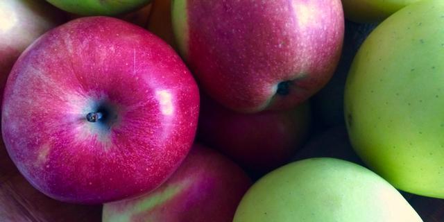 Mensen danken zicht in kleur vermoedelijk aan fruit etende voorouder