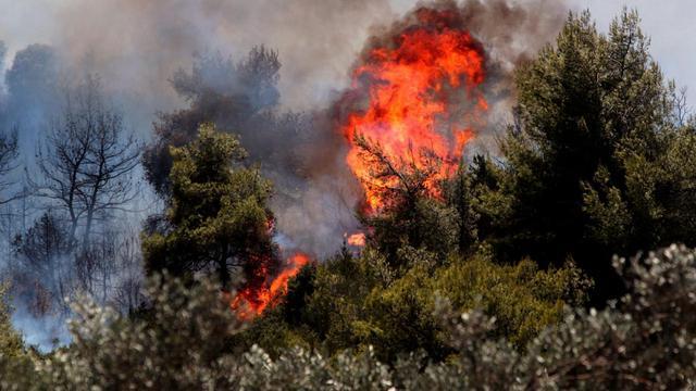 Noodtoestand wegens bosbranden op Grieks eiland