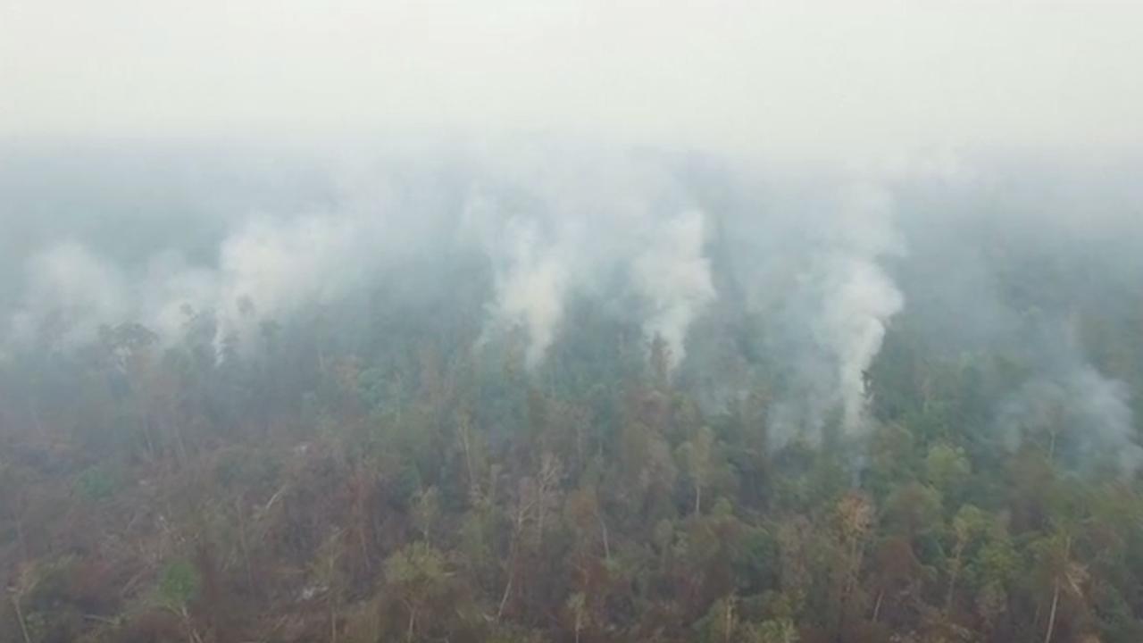 Drone filmt bosbranden in Borneo