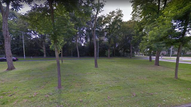 Verdachte aangehouden na schietpartij in park De Gagel
