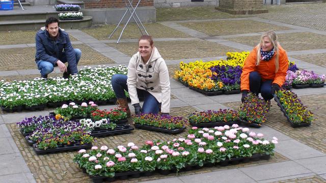 Verkoop bloemen voor Koningsdag brengt in Klundert 3.380 euro op