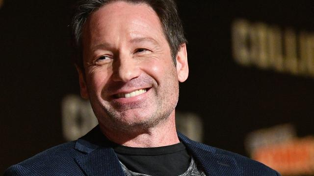 David Duchovny deed auditie voor rol in Full House