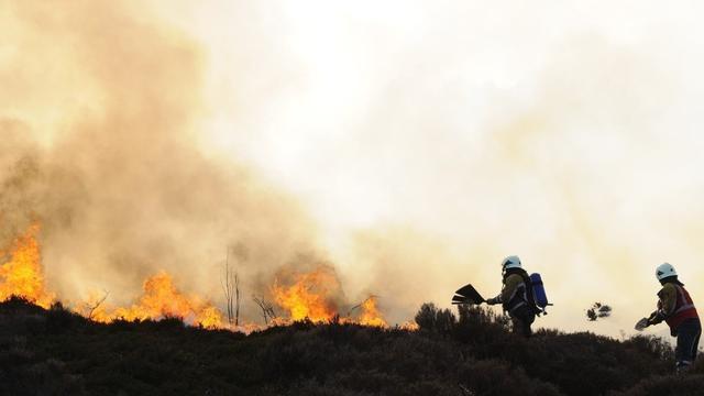 Enige tijd zeer grote brand in duingebied Schoorl