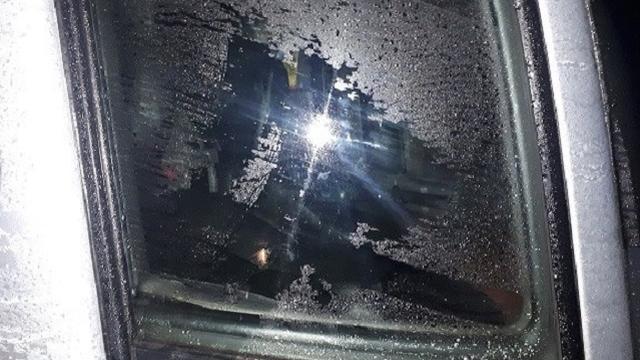 Politie houdt verdachte van diefstal uit auto's aan op Van Bossestraat