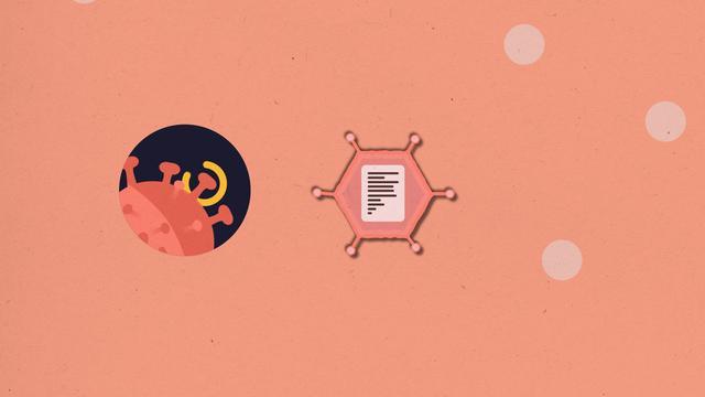 Zo werkt het Janssen-vaccin in je lichaam