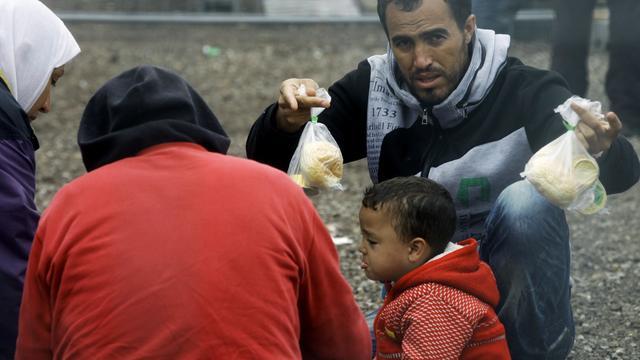'Vluchtelingen worden gevoerd als dieren'