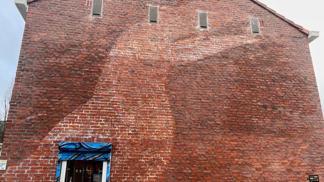 De muur zonder de muurschildering van de toekan.