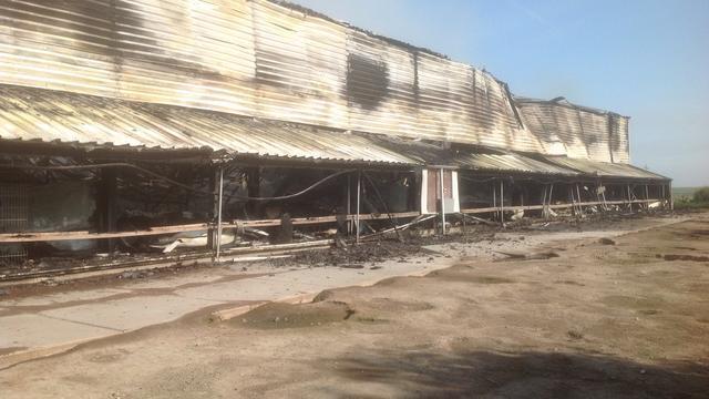 Tienduizenden kippen dood door brand stal Swifterbant