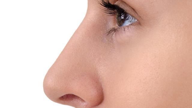 'Vorm van neus en kin wordt beïnvloed door vijf genen'