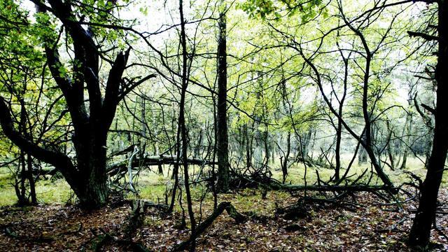 Nationaal park Utrechtse Heuvelrug breidt uit