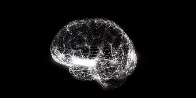 Ontwikkeling computermodel van menselijk brein van start
