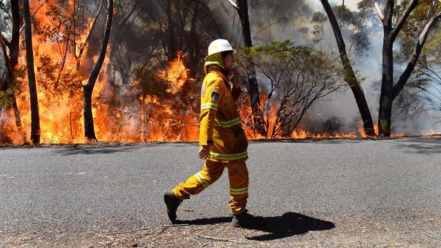 Tientallen huizen in Australië verwoest door bosbranden