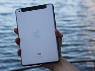 Geen nieuwe 7,9 inch iPads meer