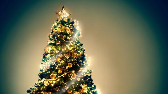 Vrouw slaat echtgenoot met kerstboom