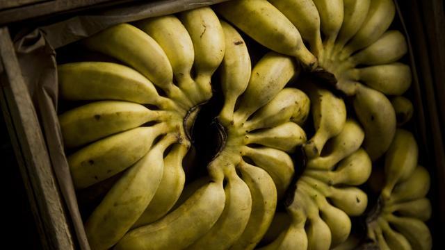 'Bananendoos wordt vervangen door plastic krat'