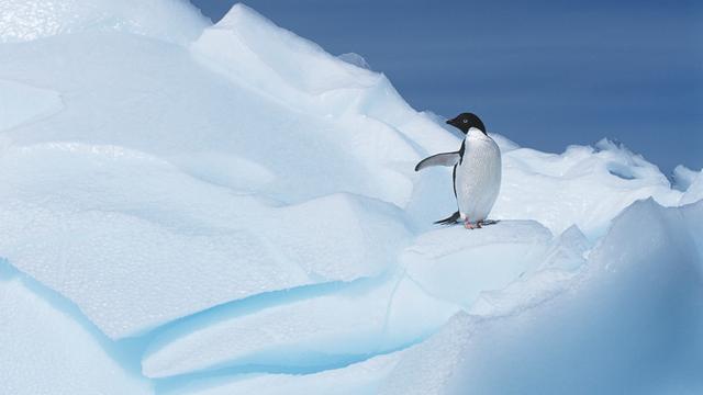'Diamanten te vinden op Antarctica'
