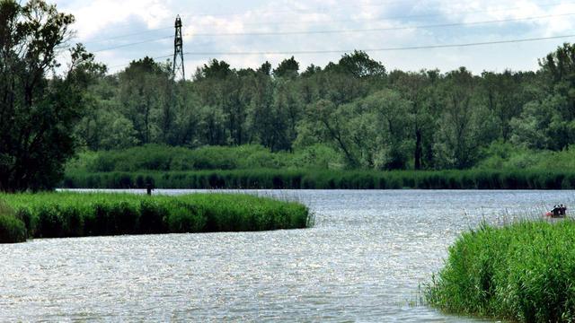 Staatssecretaris Dijksma heeft Natuurnetwerk Nederland bijna rond
