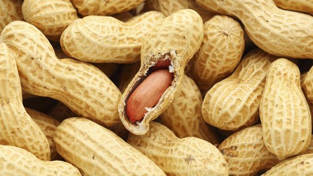Onderzoekers melden doorbraak bij behandeling van pinda-allergie