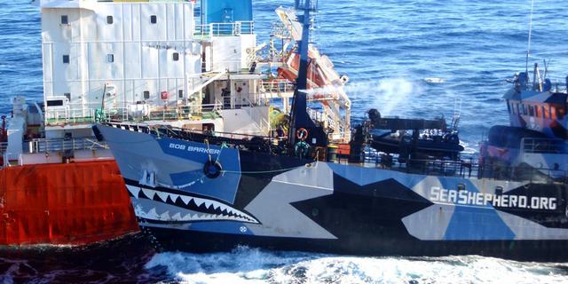Inspectie onderzoekt aanvaring Sea Shepherd