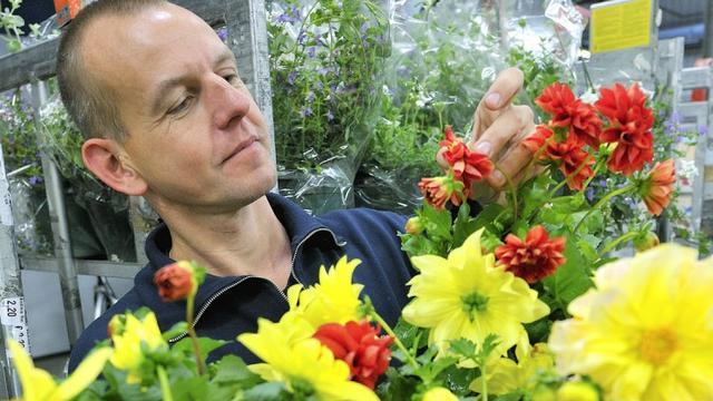 Vakbond FNV vindt bonus top bloemenveiling onbegrijpelijk