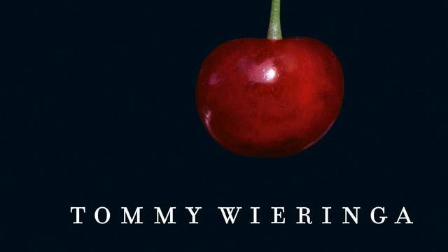 Tommy Wieringa - Een mooie jonge vrouw