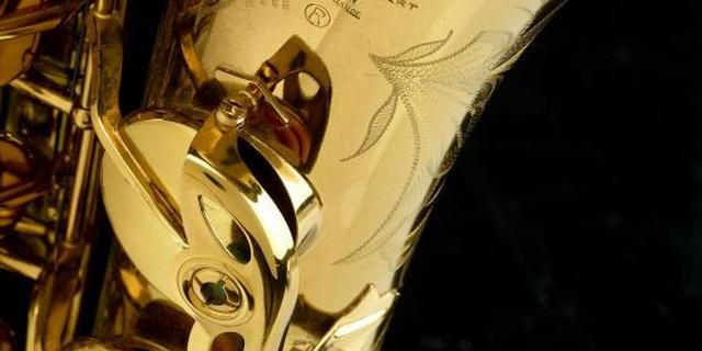Saxofoon spelende automobilist aangehouden op A7