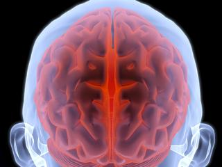 Patiënt kon na stimulatie van 'zwerfzenuw' weer simpele instructies opvolgen