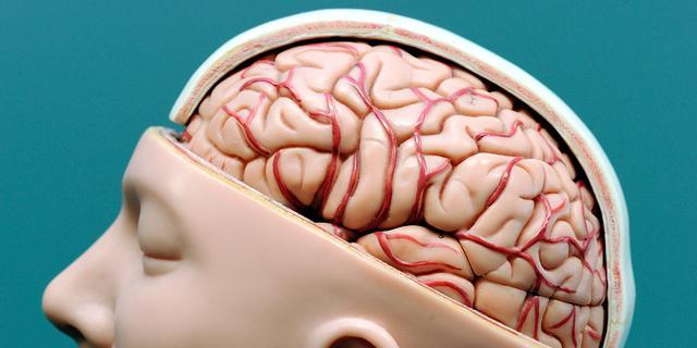 Defensie VS wil hersenschade herstellen met geïmplanteerde chip