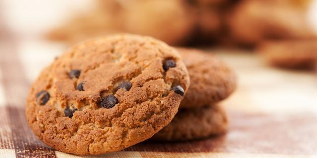 Veenendaalse koekjesbakkerij vitaalste bedrijf