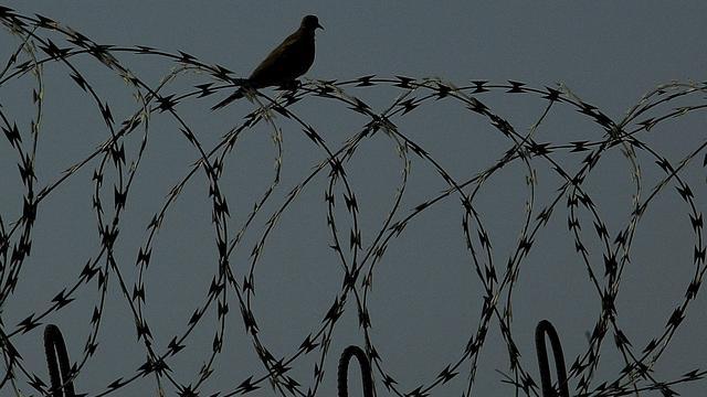Europa hekelt martelingen in Oekraïne