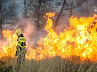 Ongeveer tien hectare natuurgebied door vlammen verwoest