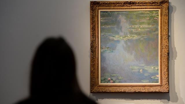 Picasso's en Monet leveren ruim 50 miljoen op