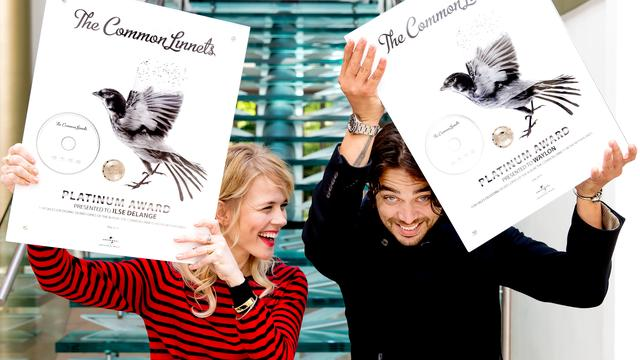 The Common Linnets breken record in Mega Top 50