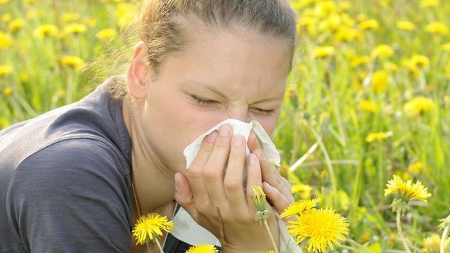 Mogelijk veel hooikoortsklachten door lenteweer