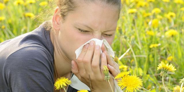 'Toename allergieën door gebrek aan bacteriën in darmen'