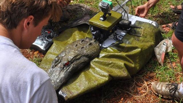 Robotkrokodil inspecteert kwaliteit rivierwater