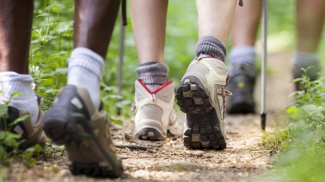 Strijd om voet- en fietspaden in Zwarte Woud
