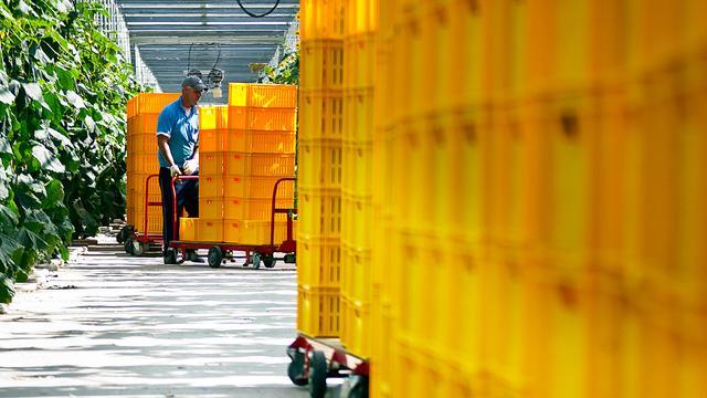 Nederland minder in trek bij arbeidsmigranten