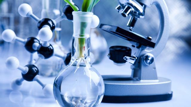 Miljoenensubsidie voor Green Chemistry Campus Bergen op Zoom