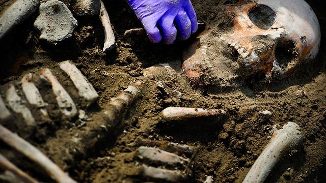 Negen oude skeletten gevonden in Westfriese Omringdijk