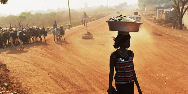 Tientallen doden door veestrijd Zuid-Sudan