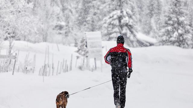 Vermindering Noordpoolijs zorgt voor sneeuw in Europa