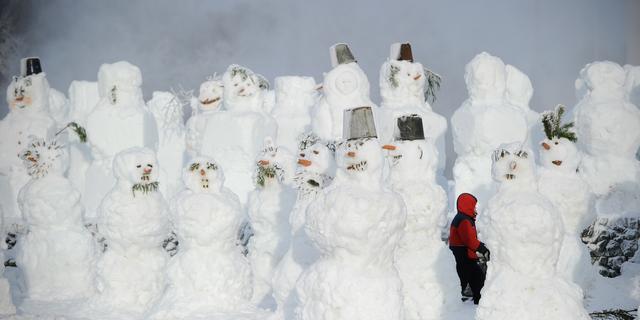 Langste koudegolf België in meer dan 70 jaar
