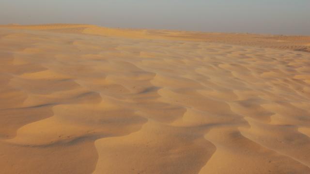 Mens trok via Arabisch schiereiland de wijde wereld in