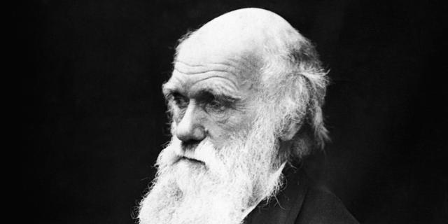 Wetenschapper vindt Darwin-fossielen