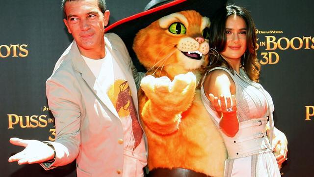 Antonio Banderas geeft mollige kat een zwoele stem