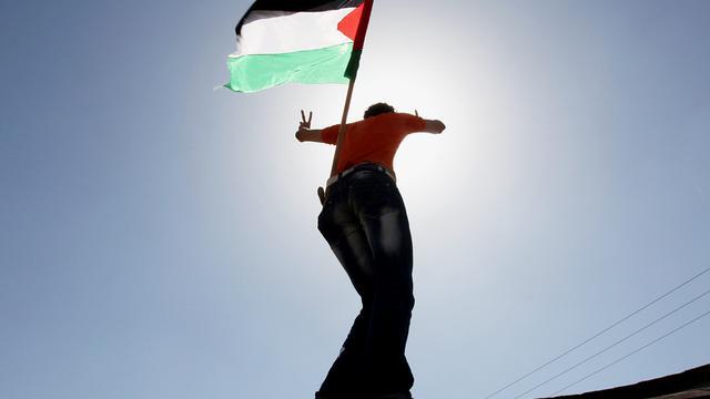 'Duizenden olijfbomen Palestijnen verwoest'