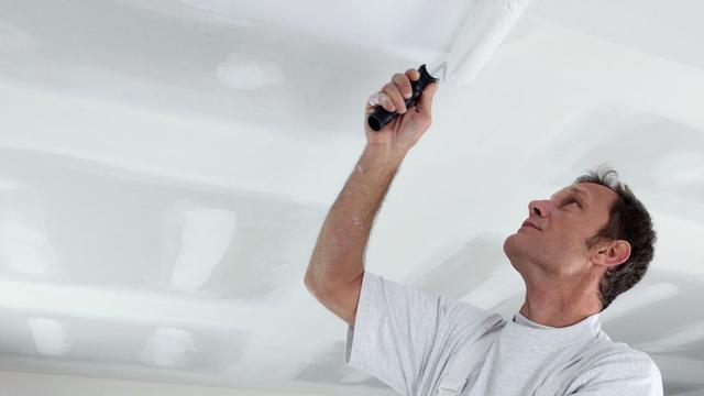 'Zelfstandige schilders proberen onder pensioenplicht uit te komen'