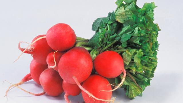 Beautyingrediënt onder de loep: Radijswortel